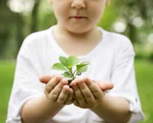 Little boy holding soil
